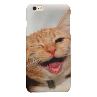 Cat winking - orange cat - funny cats - cat smile