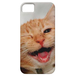 Cat winking - orange cat - funny cats - cat smile case for the iPhone 5