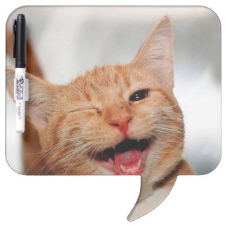 Cat winking - orange cat - funny cats - cat smile dry erase board