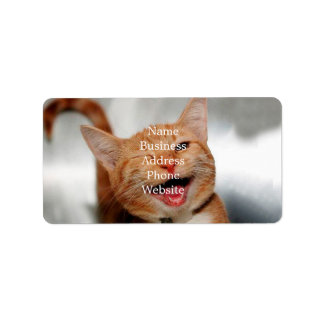 Cat winking - orange cat - funny cats - cat smile label