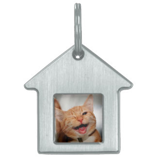 Cat winking - orange cat - funny cats - cat smile pet tag