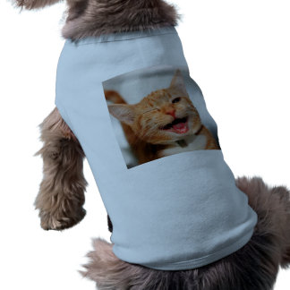 Cat winking - orange cat - funny cats - cat smile shirt