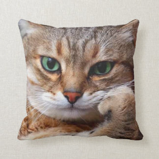 cat with attitude throw pillow