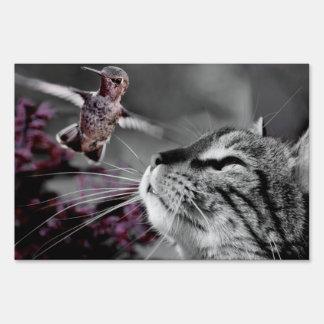 Cat with Bird Sign