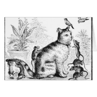 Cat with Birds and Rats Card