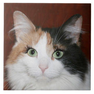 Cat with eyelashes ceramic tiles