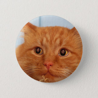 Cat With Fireworks Eyes 2 Inch Round Button