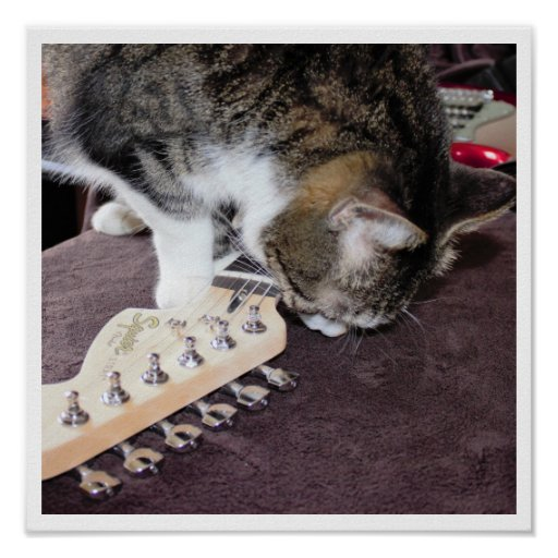 Cat with Guitar Poster