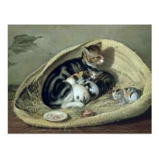 Cat with Her Kittens in a Basket, 1797 Postcard