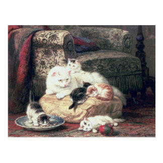 Cat with her Kittens on a Cushion Postcard