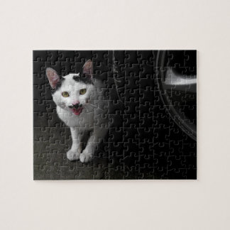 Cat with Mustache Jigsaw Puzzle
