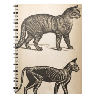 Cat with skeleton spiral notebook