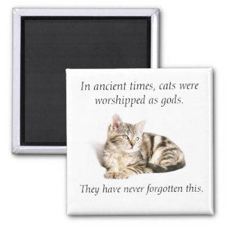 Cat worship magnet