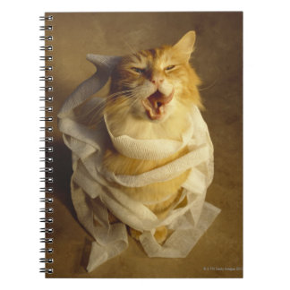 Cat wrapped in medical gauze spiral notebook