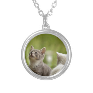 Cat Young Animal Curious Wildcat Animal Nature Silver Plated Necklace