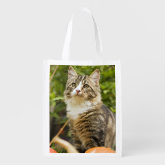 Cat Reusable Grocery Bag