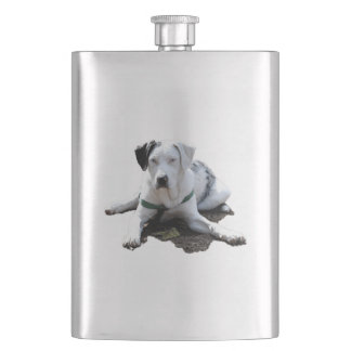 Catahoula Cur Laying Down Hip Flask