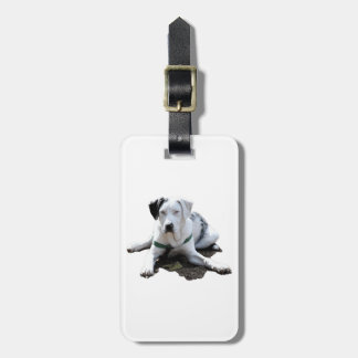 Catahoula Cur Laying Down Luggage Tag