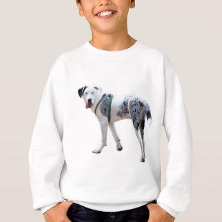 Catahoula Cur Puppy Sweatshirt