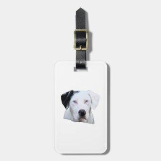 Catahoula Hound Dog Luggage Tag