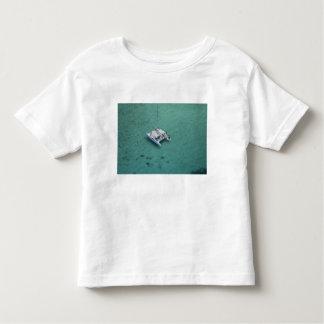 Catamaran, Mamanuca Islands, Fiji, South Pacific Toddler T-shirt