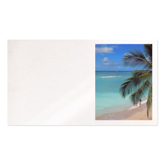 Catamaran off Waikiki Beach Double-Sided Standard Business Cards (Pack Of 100)