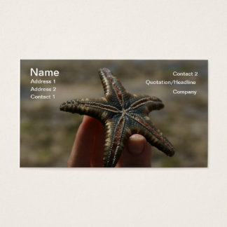 Catch a Floating Star...Starfish Business Card