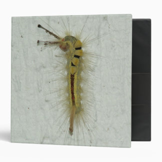 "Caterpillar, Avery Signature 2"" Binder. 3 Ring Binder"