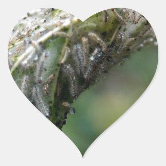 Caterpillar Hatch Cocoon Rain Fall Heart Sticker