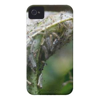 Caterpillar Hatch Cocoon Rain Fall iPhone 4 Case-Mate Case