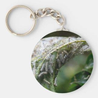 Caterpillar Hatch Cocoon Rain Fall Keychain