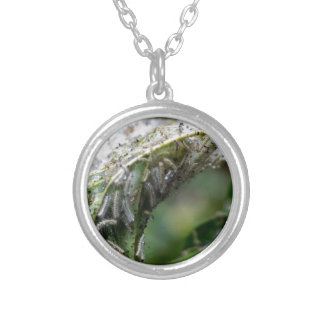 Caterpillar Hatch Cocoon Rain Fall Silver Plated Necklace