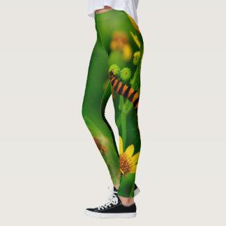 Caterpillar 🐛 leggings