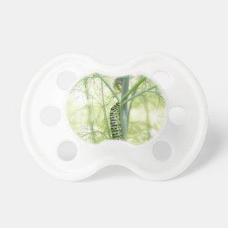 Caterpillar Pacifier