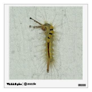 Caterpillar, Wall Decal. Wall Decal
