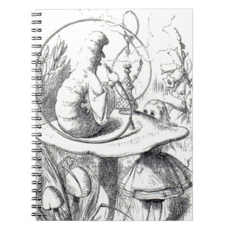 Caterpiller Smokes a Hookah on am ushrooa Notebook