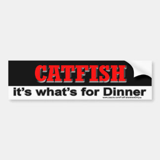 Catfish it's what's for dinner Bumper Sticker