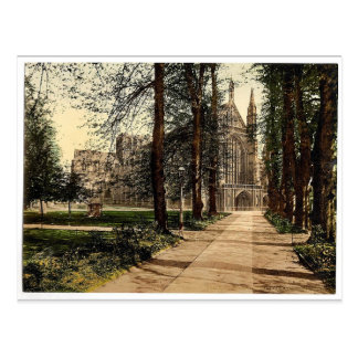 Cathedral and avenue, Winchester, England rare Pho Postcard