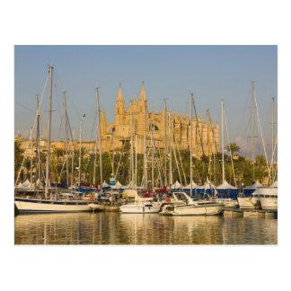 Cathedral and marina, Palma, Mallorca, Spain 2 Postcard