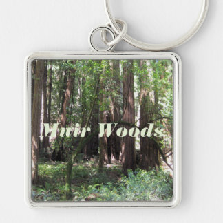 Cathedral Grove In Muir Woods Keychain