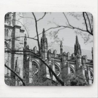 Cathedral in Spring Mouse Pad