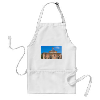 Cathedral in Valencia, Spain Standard Apron