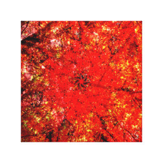 Cathedral of Autumn Canvas Print