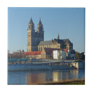 Cathedral of Magdeburg 03.01 Tile