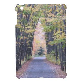 Cathedral Road iPad Mini Cover