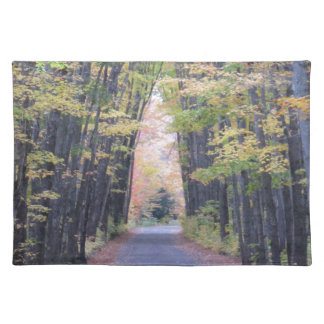 Cathedral Road Placemat