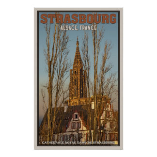 Cathédrale Notre Dame and Trees Poster