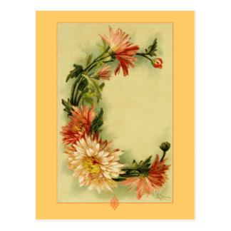 Catherine Klein Flower Alphabet C Chrysanthemum Postcard