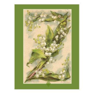 Catherine Klein Flower Alphabet Z Lily of Valley Postcard