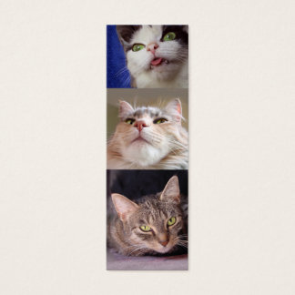 Catlovers' Bookmark Mini Business Card